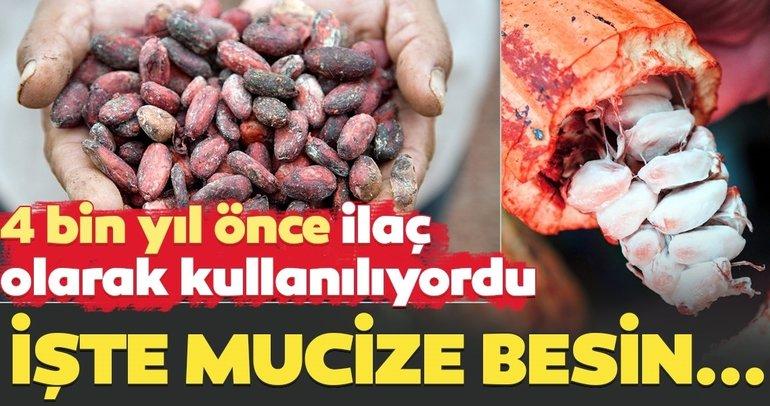 Binlerce yıl önce ilaç olarak kullanılıyordu! Bu besin tam bir mucize...