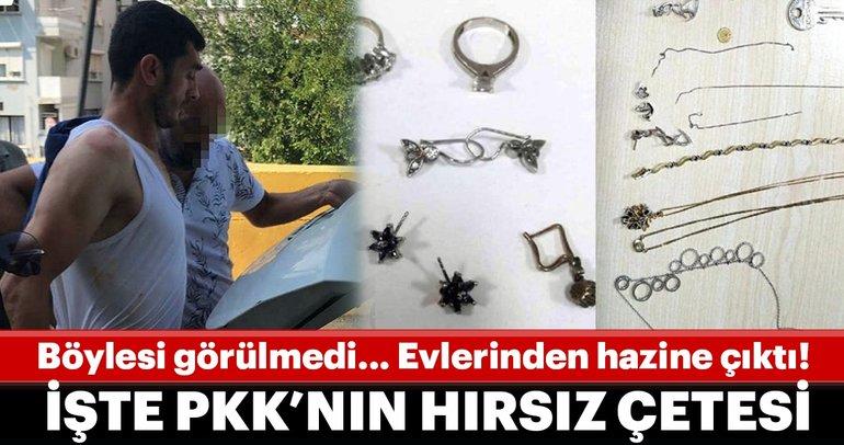 Böylesi görülmedi... PKK'nın hırsız çetesi!