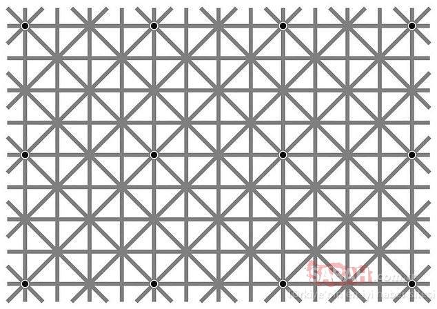 Resimdeki kediyi görebiliyor musunuz? Sosyal medyayı sallayan optik illüzyonlar...