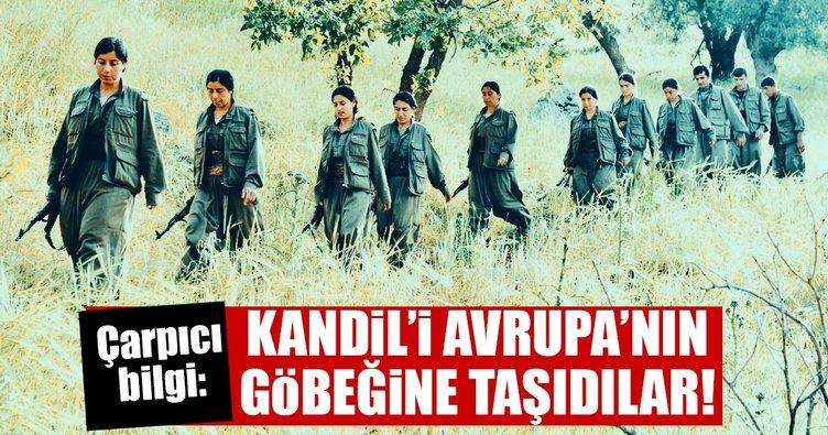 Alp eteklerindeki PKK eğitim kampı Europol raporunda