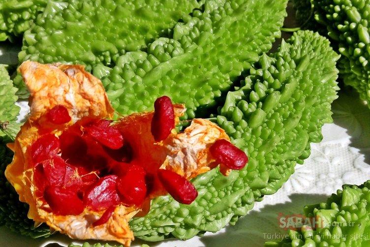 Uzmanlar açıkladı... Bu besin kanı temizliyor ve kanseri önlüyor!