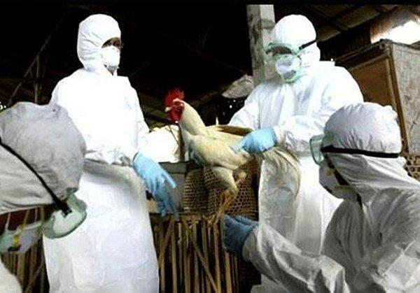 Son dakika haberi: Corona virüs sürerken bir salgın daha! Fransa'da panik...