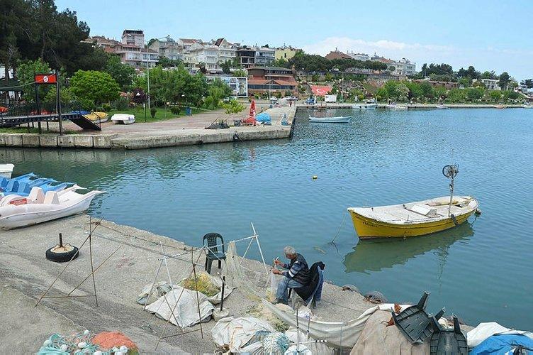 Alternatif bir rota arıyorsanız...Yeşili ve oksijeni bol Karadeniz turu