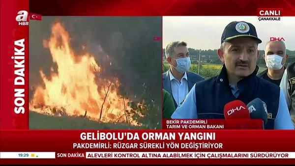 Tarım ve Orman Bakanı Bekir Pakdemirli'den Gelibolu'daki yangına ilişkin açıklama | Video