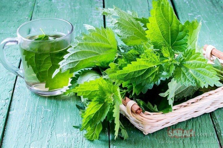 Nikotini vücuttan atmaya yardımcı süper besinler