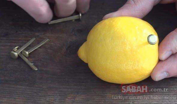 Limonla yaptığı şeye bakın!