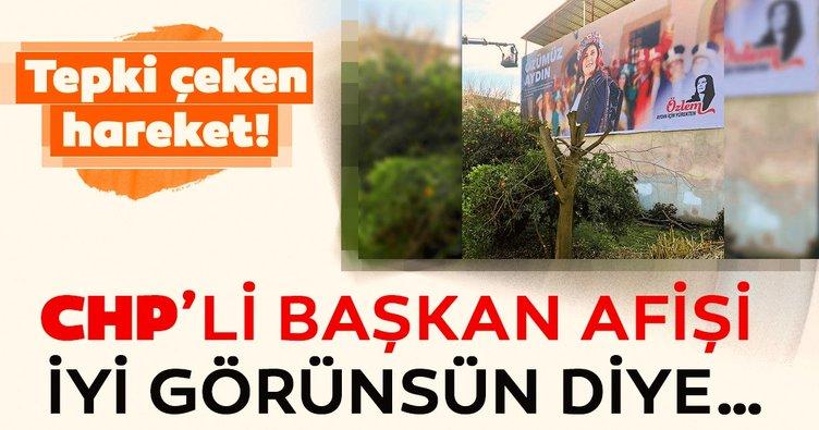 CHP Aydın Büyükşehir Belediye Başkanı Özlem Çerçioğlu, afişi görünsün diye ağacı kestirdi