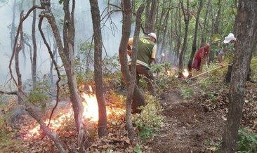Ülke genelindeki 6 orman yangını kontrol altına alındı #burdur