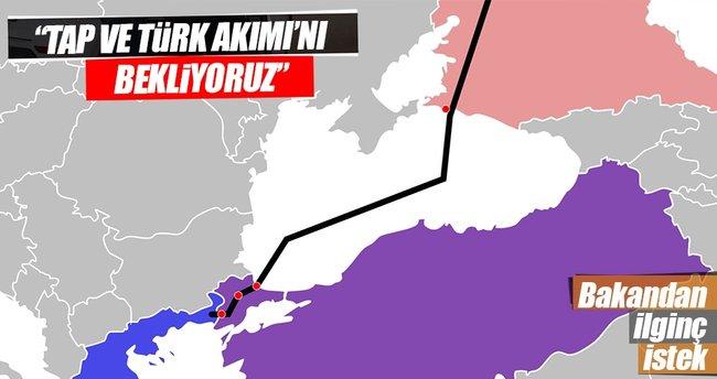 Bosna Hersek TAP ve Türk Akımı'nı bekliyor