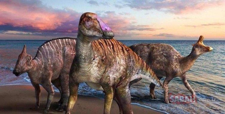 Dinozorları yeryüzünden silmişti! Bilim insanları ilk kez ortaya çıkardı