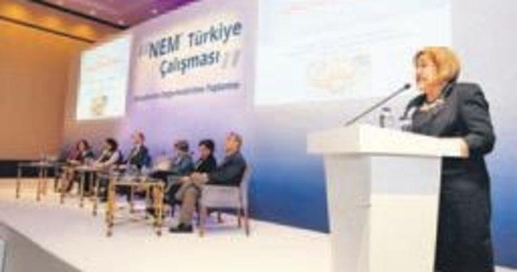 NEM-Türkiye çalışması bilim dünyasına anlatıldı