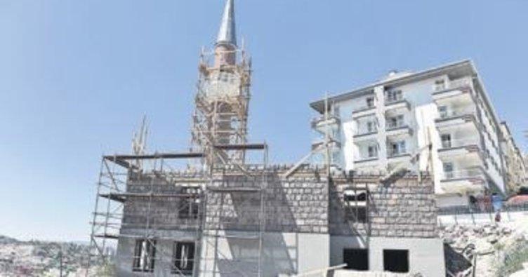 Osmanlı ve Selçuklu camilerde yaşıyor