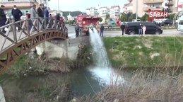 Antalya'da 9 yaşındaki Ecrin'den insanlık dersi! Yüzlerce balığın telef olmasını önledi