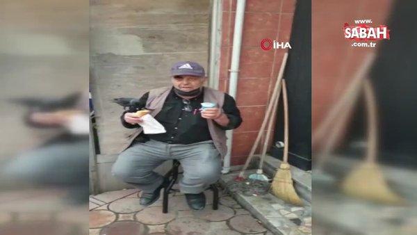 Omzuna konan kargayla birlikte böyle döner yedi...   Video