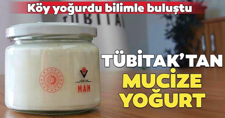 Köy yoğurdu bilimle buluştu... TÜBİTAK uzun ömürlü yoğurt geliştirdi