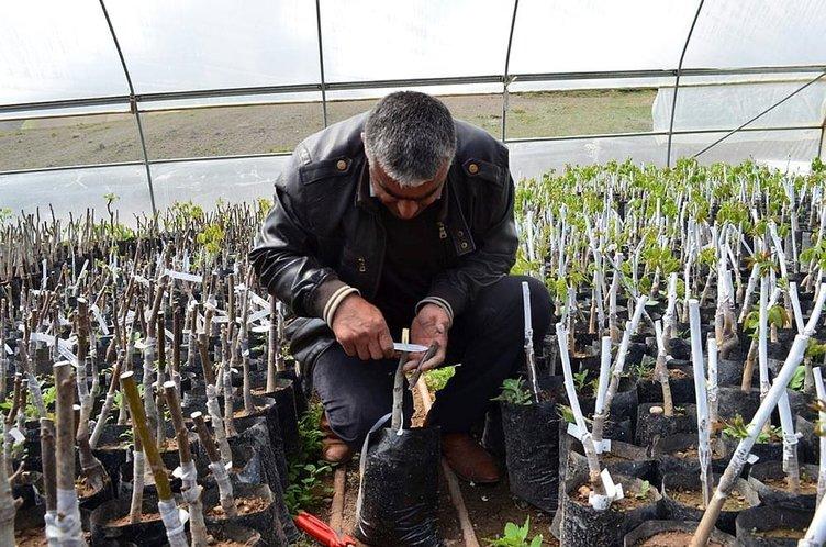 Bitlisli çiftçi gen bahçesi kuracak