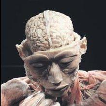 Zihin kontrolü yaptıkları kazara ortaya çıktı