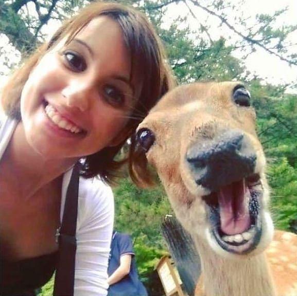 Hayvanlarıyla birlikte çekilmiş 20 selfie