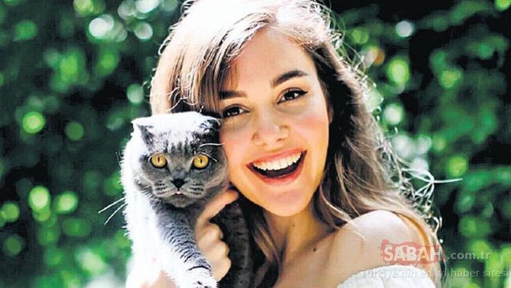 Eser Yenenler ile Berfu Yenenler çiftinin kedileri korona oldu! Berfu Yeneler Biz coronadan kaçalım derken...