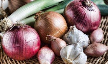 Soğanın faydaları nelerdir? Soğan yemek neye iyi gelir?