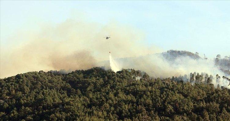 Aydın'da da orman yangını çıktı: Ekipler müdahale ediyor