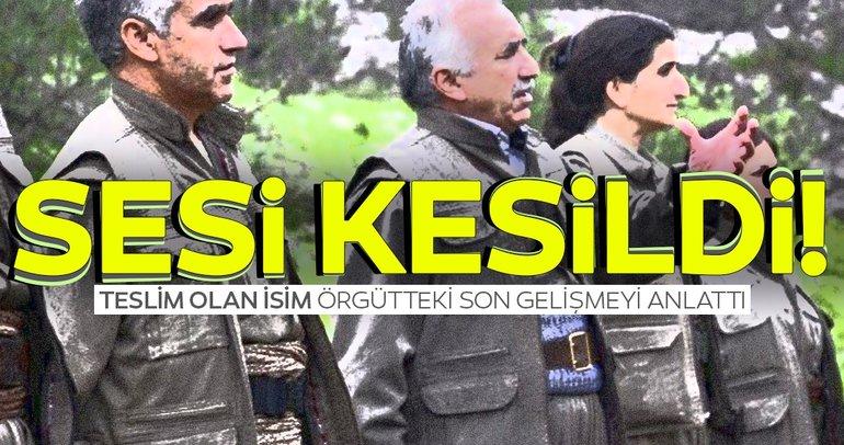 Teslim olan PKK'lılar: Örgüte katılanlar hayal kırıklığı yaşıyor