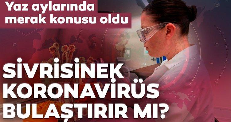 Son dakika...Sivrisinekler coronavirüs bulaştırır mı? İşte Covid-19 ile ilgili çarpıcı araştırma