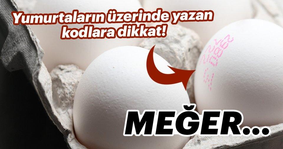 Yumurtanın üzerinde yazan kodlara dikkat!