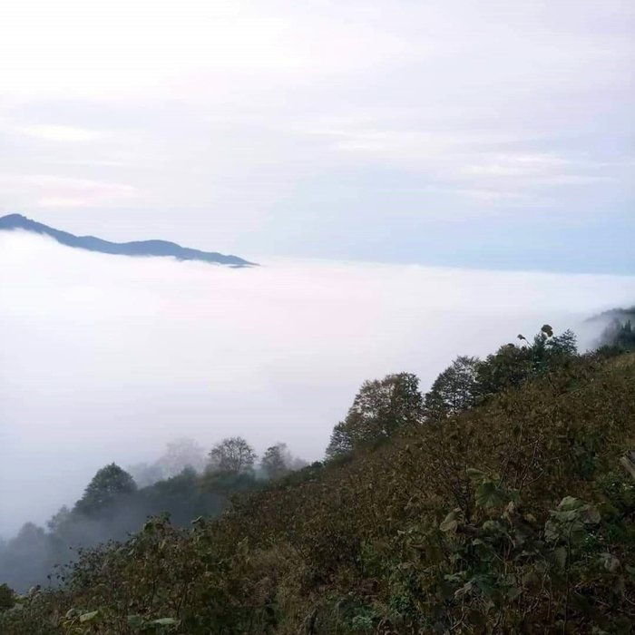 Sis bulutlarının kartpostallık görüntüleri