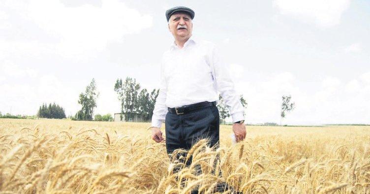 5 kişiden 1'i tarım sektöründe çalışıyor