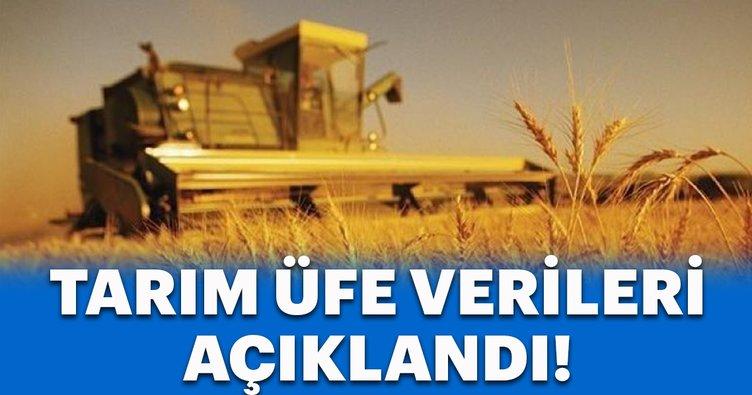 Tarım ÜFE Aralık verileri açıklandı!