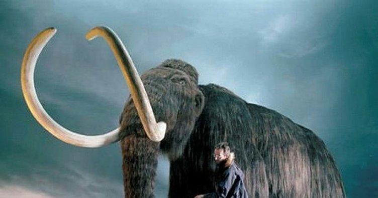 Meksika'da 15 bin yıllık mamut tuzakları bulundu