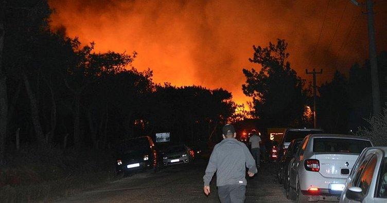 Son dakika: Balıkesir'de orman yangını