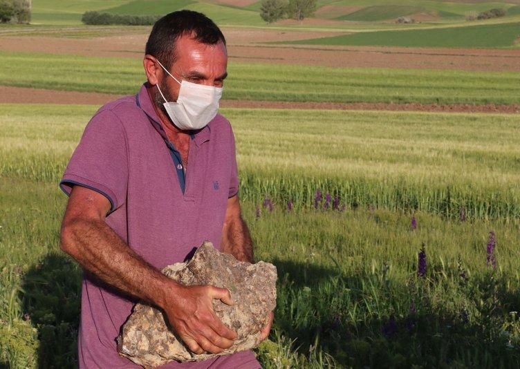 Nohut ekerken tarlasında göktaşı buldu... Rusya'dan 68 bin dolar teklif geldi