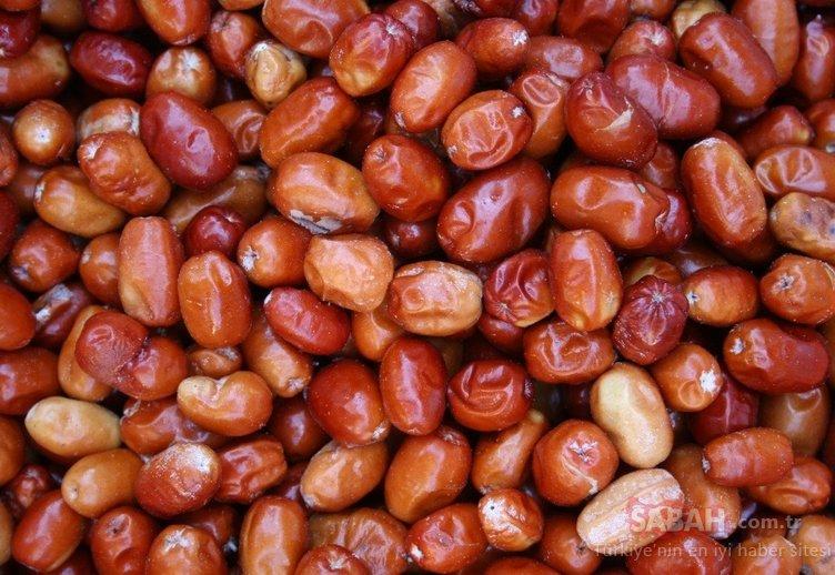 Bu besin omega 7 deposu! İşte mide bağırsak kanserinden koruyan mucize besin iğdenin faydaları...