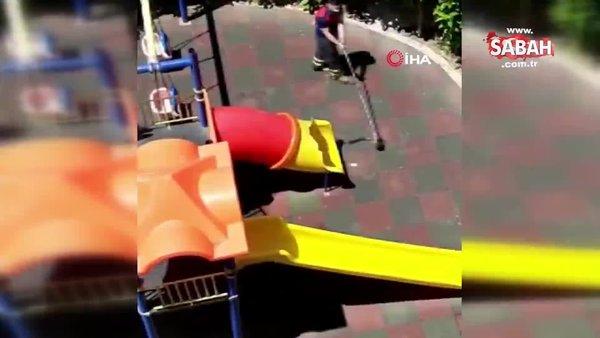 Osmaniye'de çocuk parkında yılan paniği