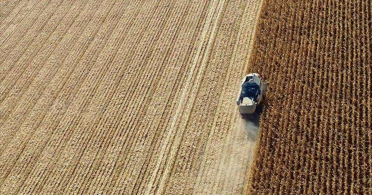 Limak Holding'in tarım yatırımı ülkeye 130 milyon dolar girdi sağladı
