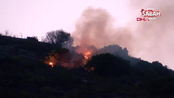 Son Dakika: İzmir Menderes'te orman yangını | Video