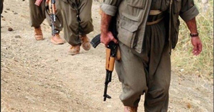 Şırnak ve Diyarbakır'da 2 terörist öldürüldü