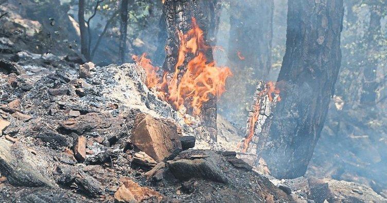 Köye alınmadığı için ormanı yaktı iddiası