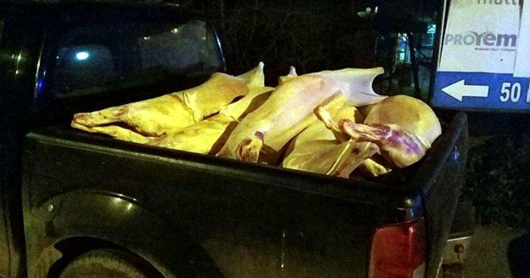 Kaçak etler polise takıldı