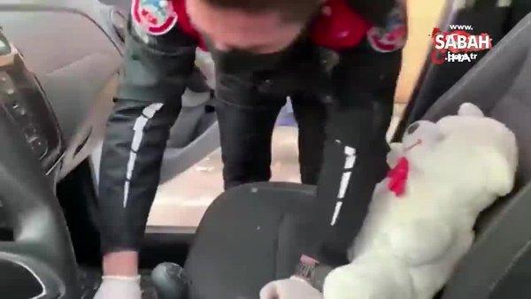 Ataşehir'de ruhsatsız silaha oyuncak ayı kamuflajı | Video