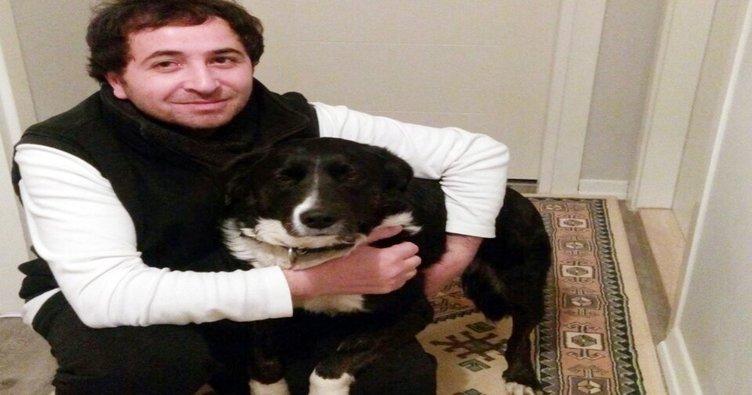 Köpeğin havlamasını bahane edip öldürmekle tehdit ettiler