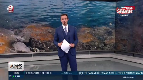 Marmara'da tehlike dibe indi | Video