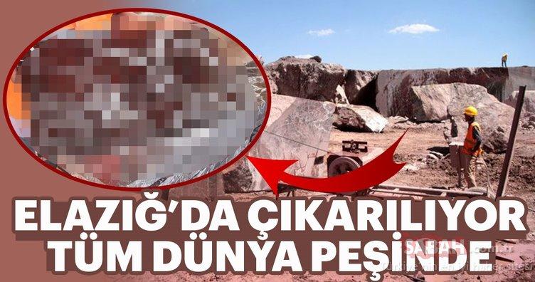 Elazığ'da çıkıyor, tüm dünya peşinde!
