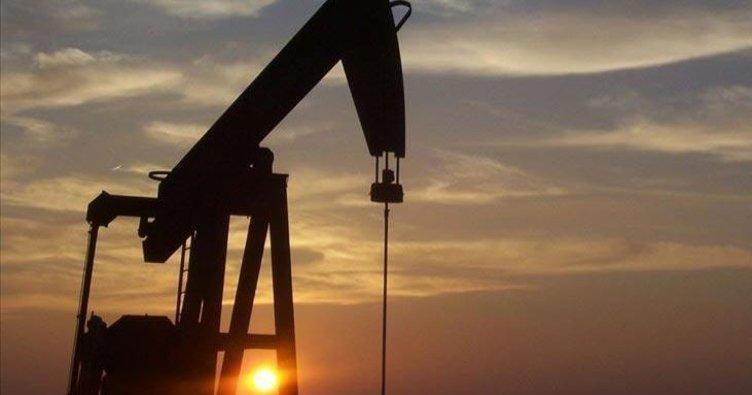 Brent petrolün varili 67,73 dolar