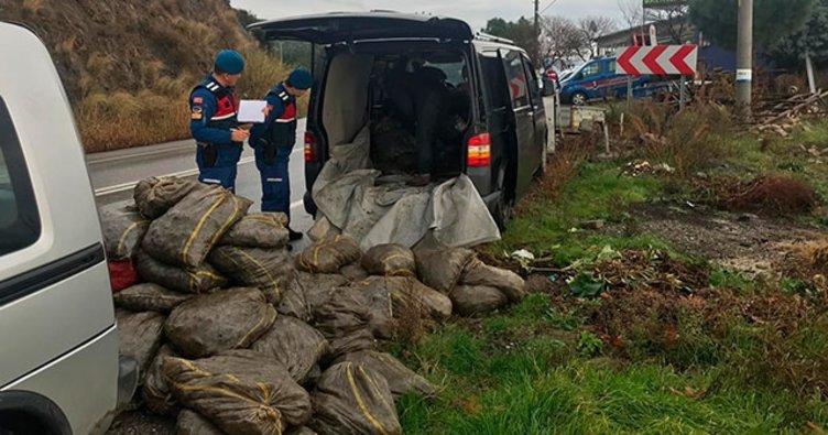 İki araçta, 2 ton kaçak midye ele geçirildi