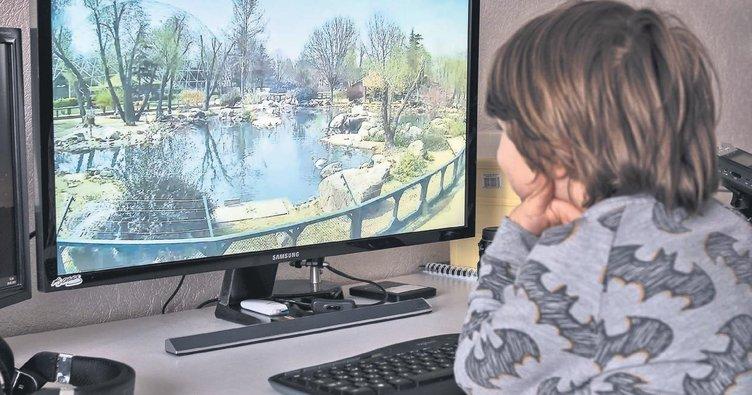 Çocuklar hayvanat bahçesini evden izliyor