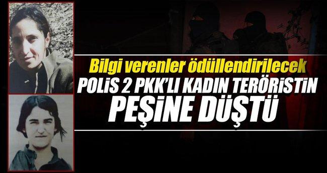 Polis 2 PKK'lı kadın teröristin peşine düştü