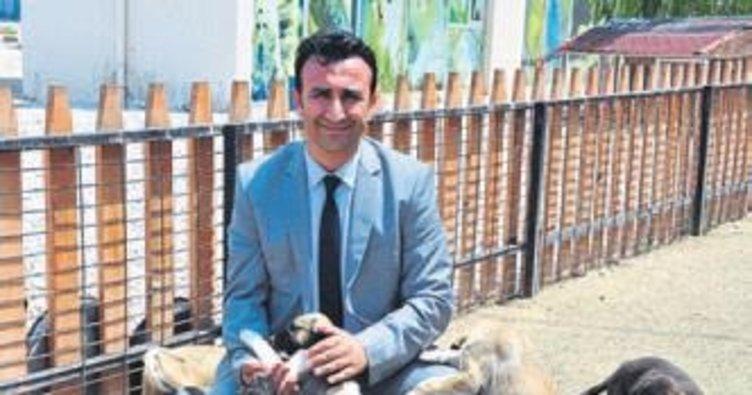 Şuçta kullanılan 39 köpeğe rehabilite